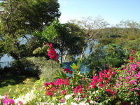 Panama Fishing Resort - Gardens